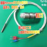 PT100  两线制温度传感器 WZP-010