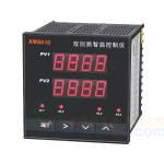 温度仪表 XMS61X 汇邦
